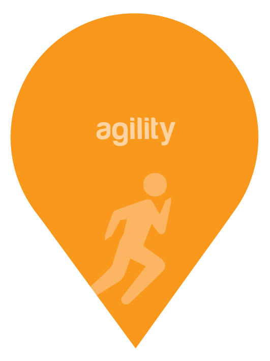 values-markers-agility
